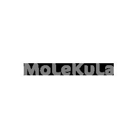 Molekula –  Alliance of associations